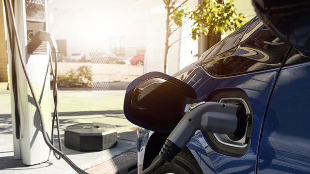 Which electric vehicle stock should you choose?