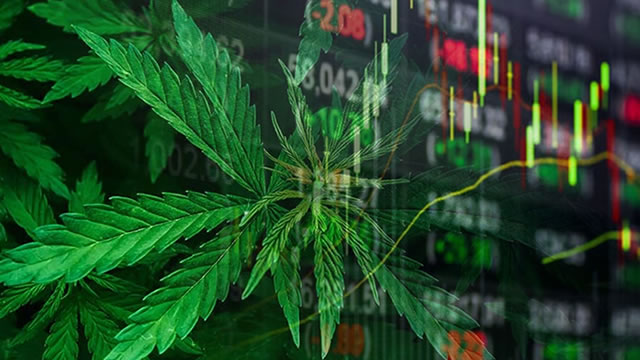 The Future of Cannabis Stocks in 2021
